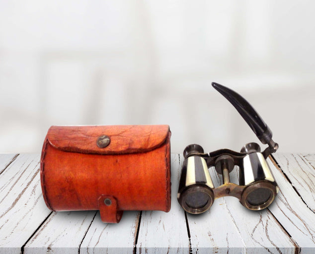 Stripped Binoculars with leather cove