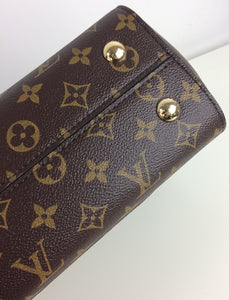 Louis Vuitton Cluny MM monogram