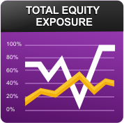 Equity Concentration Report