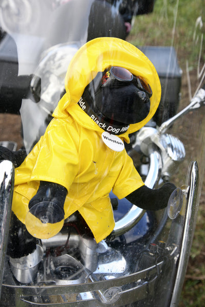 Black Dog Ride Mascot Winston is prepared for riding, in any weather!