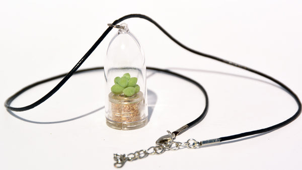 Bubbly Live Plant Necklace - Terrarium Live Plant Leather Cowhide necklace - BooBoo Plant
