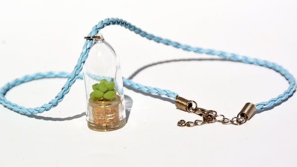 Bubbly Live Plant Necklace - Terrarium Woven Blue necklace - BooBoo Plant