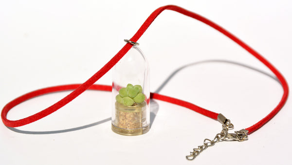 Bubbly Live Plant Necklace - Terrarium Suede Red necklace - BooBoo Plant