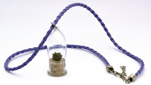 Desert - Terrarium Plant Necklace