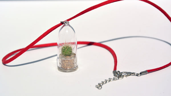 Fluffy - Live Plant Necklace, Terrarium Suede Red necklace plants - BooBoo Plant