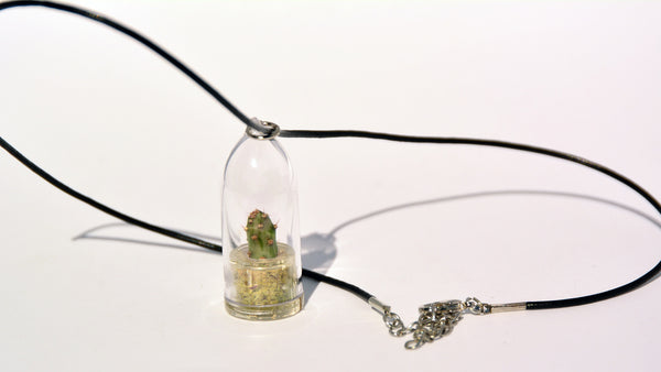 Goldy - Live Plant Necklace - Terrarium Leather Cowhide Boo-Boo Plant