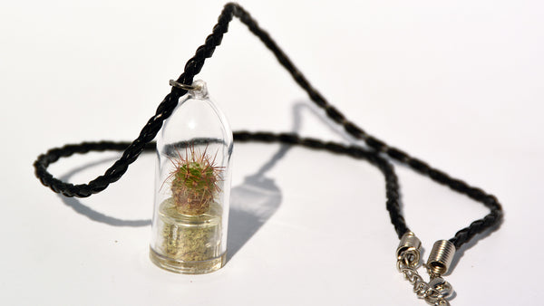 Palms Live Necklace - Terrarium Woven Black Live Necklace plant