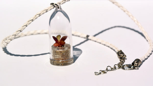 Pinky Rose Live Plant Necklace - Terrarium Woven White Necklace Living Plant BooBoo Plant.