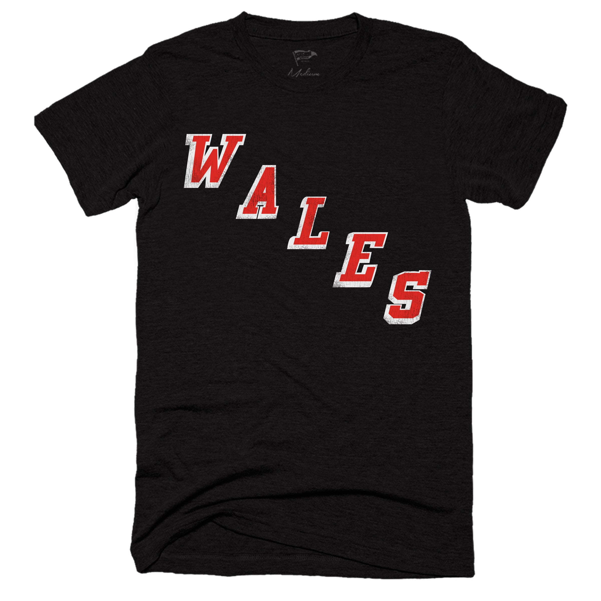 Wales Conference Tee