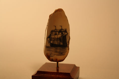 Whaling Ship on Fossil Walrus Tooth