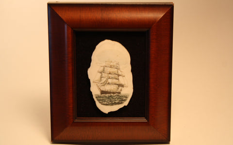 Whaling Ship on Fossil Walrus Ivory in Wooden Shadowbox