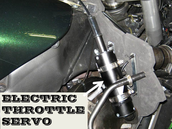 Electric Throttle Servo