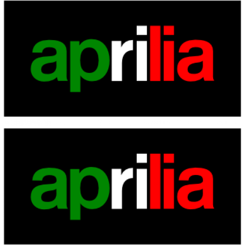 Aprilia Caponord ETV1000 Rally-Raid  (New product featuring our compact electric servo)