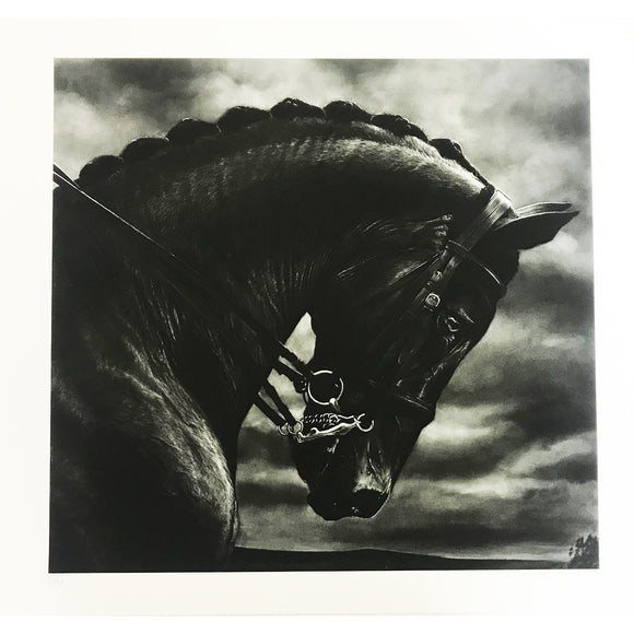 Robert Longo, Untitled (Bucephalus), 2017 - lougher-contemporary