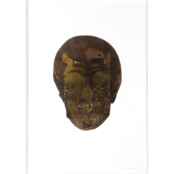 Damien Hirst, The Dead (Chocolate Oriental Gold Skull), 2009 - Lougher Contemporary