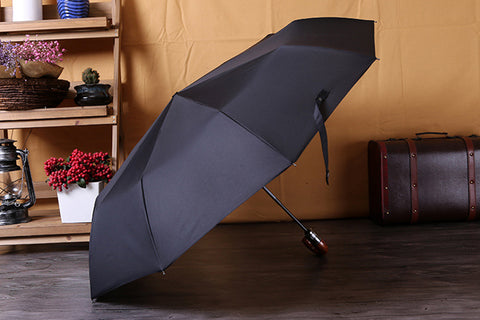 Wind Resistant Automatic Umbrella | Hiphatter