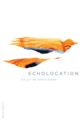 Echolocation by Sally Bliumis-Dunn