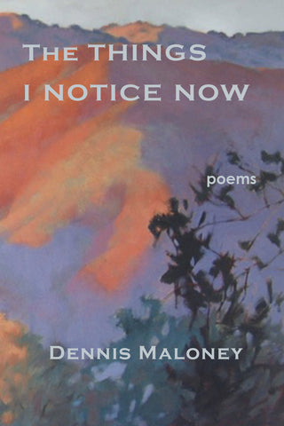 The Things I Notice Now by Dennis Maloney