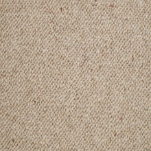 Load image into Gallery viewer, Pampas Berber Loop - Wool Carpet