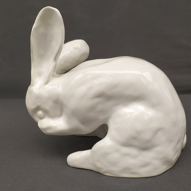 Rabbit side view