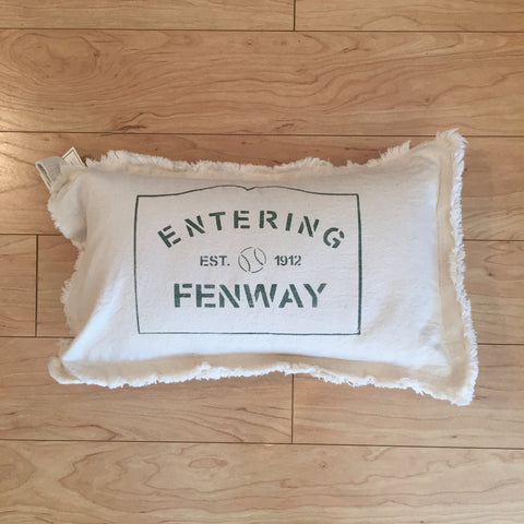 Entering Fenway Canvas Pillow
