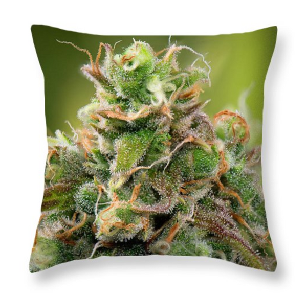 Siberian Rose Pillow