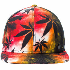 NBI Snapback-Ashes