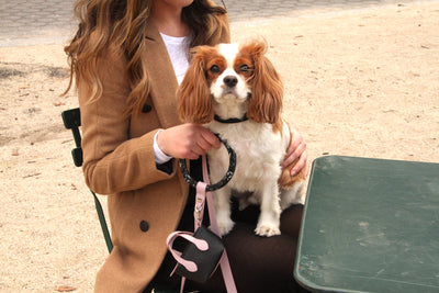 How to style our Shaya blush pet accessories!