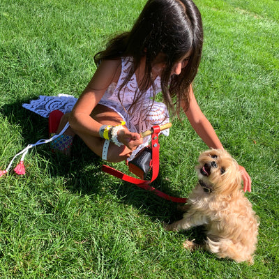 Pet Leashes Made For Kids