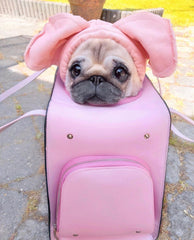 Blush Pink Pet Carrier