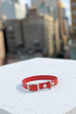 Shaya Pets Taylor collar iy.n Red Leather. Made in Italy.