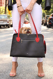 Everyday luxury pet carrier for small dogs.