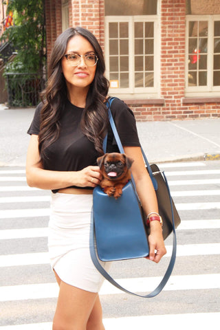 Cobalt Blue dog bag for small pets. Perfect carrier for flying, or day to day.