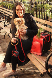 Red poop bag holder and durable red leash and dog bag.