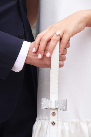 A dog leash that can take you from engagement to wedding and beyond.