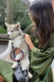 Luxury dog accessories by Shaya Pets. Mini purse that acts as a poop bag holder.