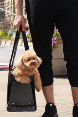 Small Dog Pet Carrier by Shaya Pets.