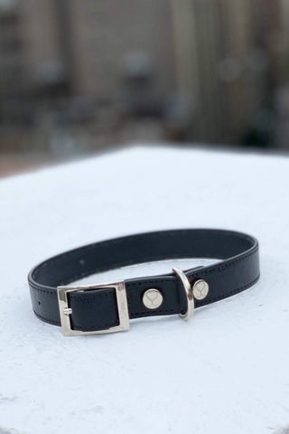 Shaya Pets Taylor collar in black leather. Made in Italy.