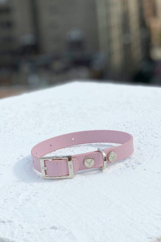 Shaya Pets Taylor Blush dog collar. Made in Italy.