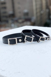 Size options in Shaya Pets dog collars.