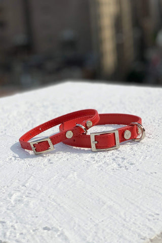 Durable red dog collar.