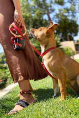 Ruby red, durable pet accessories.