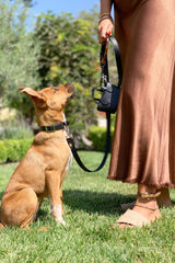 Luxury dog leash and accessories in vegan canvas.
