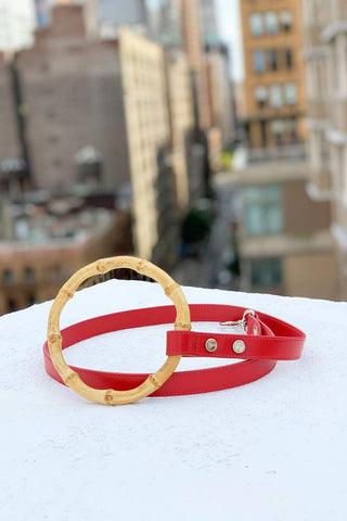 The Sasha red leather dog leash by Shaya Pets.