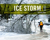 Image of Ice Storm 2013 book cover