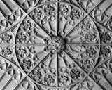 Ceiling Detail - University of Toronto photograph
