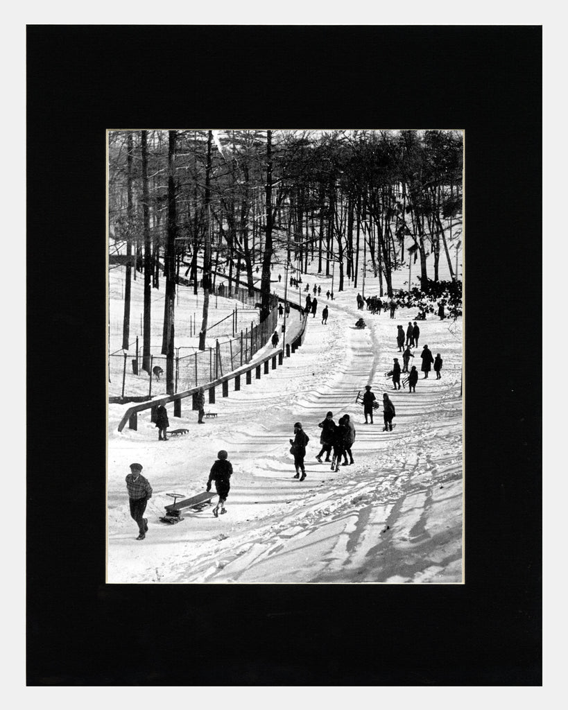Image of Matted: Sledding in High Park photograph