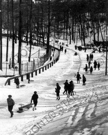 Sledding in High Park, 1936