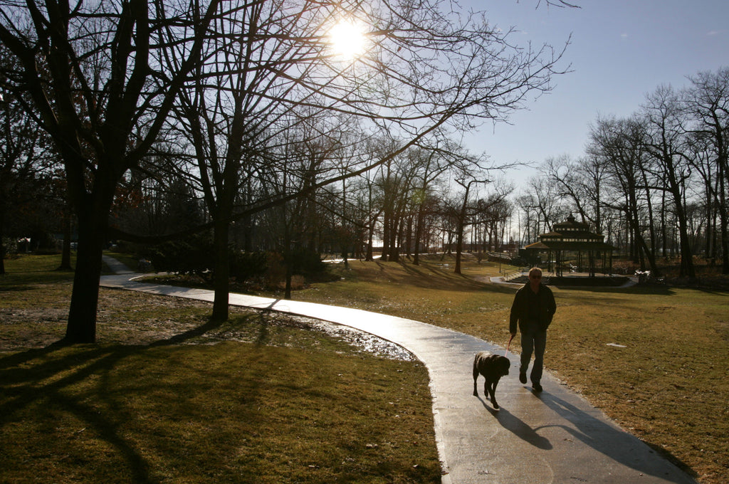 Man Walking Dog on New Years Day