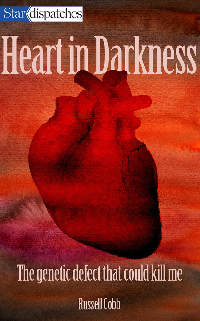 Image of Heart in Darkness book cover